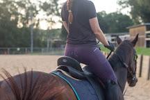 Dalson Park Indoor Equestrian Center, Brisbane, Australia