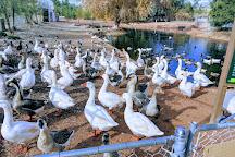 Gilcrease Nature Sanctuary, Las Vegas, United States