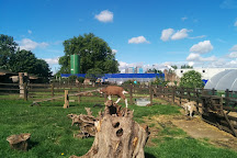 Stepney City Farm, London, United Kingdom