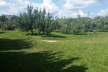 Grandad's Apples, Hendersonville, United States
