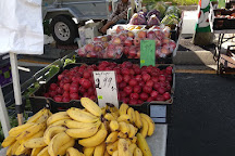 Global Food Markets, Logan City, Australia