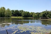 Lemon Park, Pratt, United States