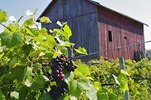 Baxter's Vineyards, Nauvoo, United States