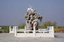 Zhalong Nature Reserve, Qiqihar, China
