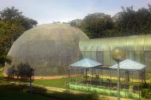 Labuan Bird Park, Labuan Town, Malaysia