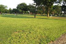Musashino Chuo Park, Musashino, Japan