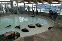 New England Aquarium, Boston, United States