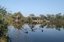 Bharatpur Bird Sanctuary, Bharatpur, India