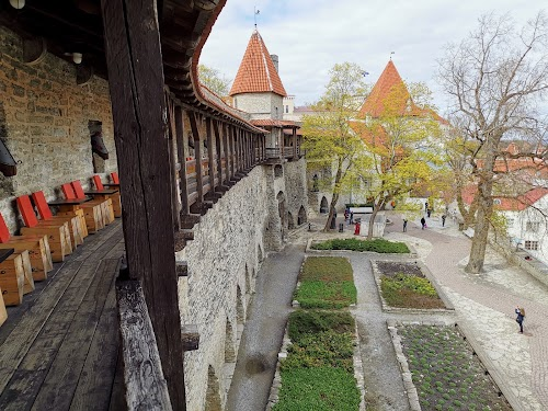 Tallinna Linnagalerii
