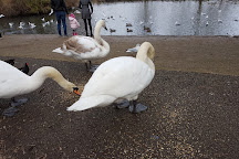 Horsham Park, Horsham, United Kingdom