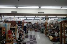 Early Owego Antique Center, Owego, United States