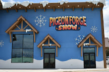 Pigeon Forge Snow, Pigeon Forge, United States