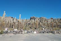 Isla Incahuasi, Uyuni, Bolivia