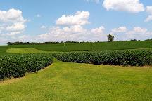 Rippavilla Plantation, Spring Hill, United States
