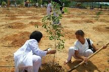 The Family Tree, Hua Hin, Thailand