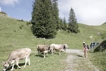 Bergbahnen Beckenried-Emmetten AG, Beckenried, Switzerland