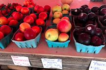 Diehl's Produce Market, Severna Park, United States