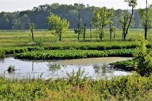 Killbuck Marsh Wildlife Area, Wooster, United States