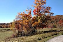 The Windham Path, Windham, United States