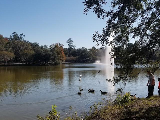 Lake Ella Park
