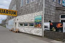 Seaside Museum & Historical Society, Seaside, United States