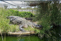 Koorana Crocodile Farm, Coowonga, Australia