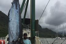 Nemesis Sport Fishing, Eleele, United States