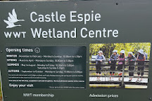 WWT Castle Espie, Comber, United Kingdom