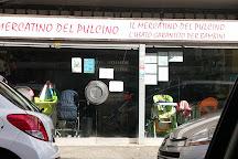 Il Mercatino Del Pulcino, Lido di Ostia, Italy