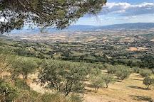 Eremo delle Carceri, Assisi, Italy