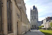 Collégiale Saint-Martin, Angers, France
