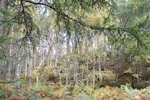 Tay Forest Park, Dunkeld, United Kingdom