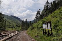 Dolina Lejowa, Tatra National Park, Poland