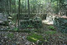 Buck Hill Management Area, Chepachet, United States