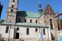 Kolegiata p.w. Sw Marcina, Opatow, Poland