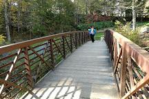 Natural Bridge State Park, North Adams, United States