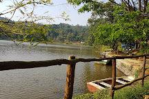 Karalad Lake, Thariyode, India