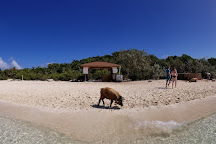 Pig Beach - Big Major Cay, Staniel Cay, Bahamas