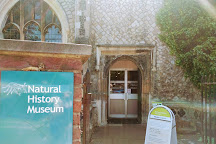 Colchester's Natural History Museum, Colchester, United Kingdom