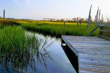 Cradle Creek Preserve, Jacksonville Beach, United States