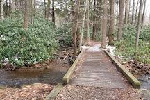 Kooser State park, Somerset, United States
