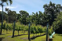 Craigow Vineyard, Cambridge, Australia