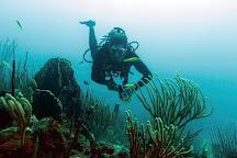 DiveCarib, English Harbour, Antigua and Barbuda