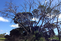 Kangaroo Island Wilderness Trail, Kangaroo Island, Australia