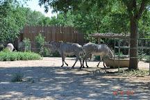 Denver Zoo, Denver, United States