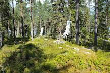 Trolska Skogen, Jattendal, Sweden