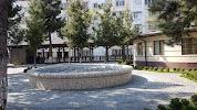 Чиланзар-16, 16-й квартал на фото Ташкента