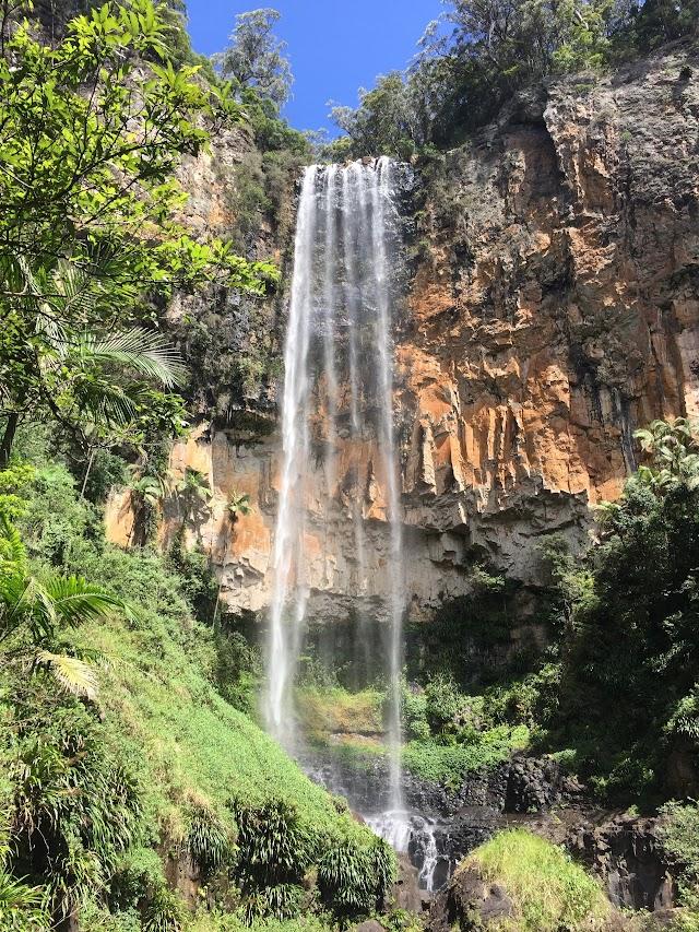 Springbrook Falls