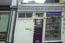 Whitstable Lavender, Whitstable, United Kingdom