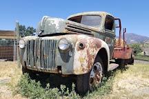 Old Faithful Geyser of California, Calistoga, United States